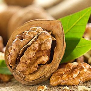 walnuts-sq