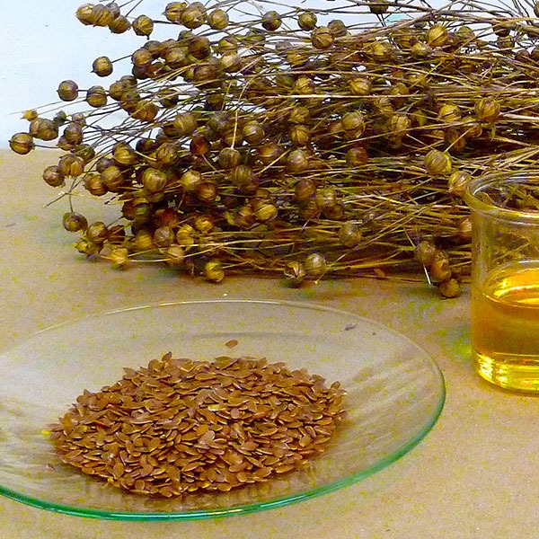 from_flax_to_linseed_oil